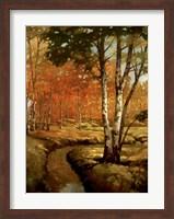 Framed Woodland Stream II