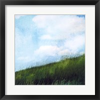 Framed Bright Field II