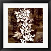 Prairie Mix III Framed Print