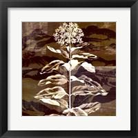 Prairie Mix VI Framed Print