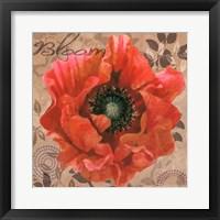 Framed Poppy Swirl V