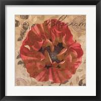 Framed Poppy Swirl VI