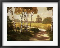 Country Walk II Framed Print