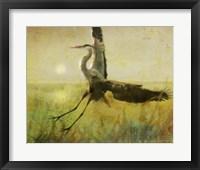 Foggy Heron II Framed Print