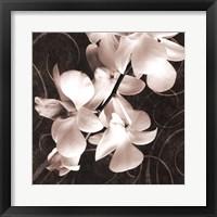 Framed Orchid & Swirls I