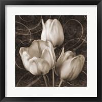 Framed Tulip & Swirls II