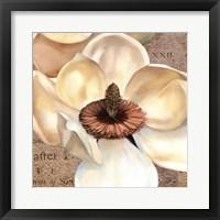 Framed Magnolia Masterpiece I