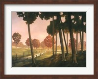 Framed Morning Light II