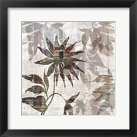 Framed Wallflower II