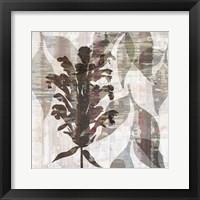 Framed Wallflower IV