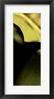 Framed Leaf Detail II