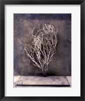Framed Desert Form III