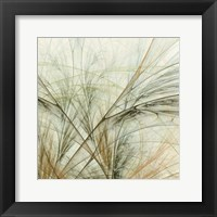 Framed Fractal Grass VI