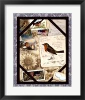 Framed Bird Watching IV