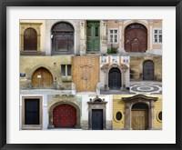 Framed Doors I