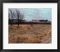 Framed Fields I