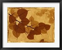 Framed Ghost Leaves I