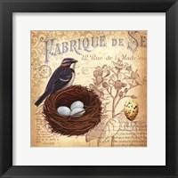Springtime in France III Framed Print