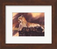 Framed Lounging Leopard