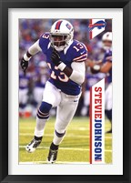 Framed Bills - S Johnson 12