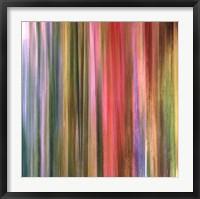 Framed Spectra Falls I