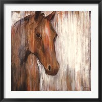 Framed Painted Pony