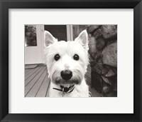 Framed Rosie
