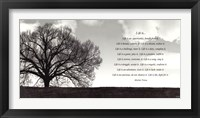Framed Life Is...