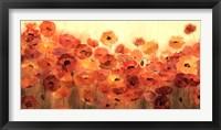 Framed Summer Poppies