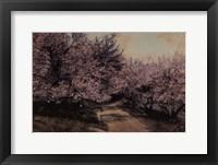 Framed Disappearing Blossom