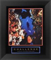 Framed Challenge - Diver