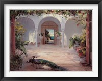 Framed Sunlit Courtyard