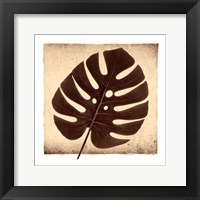 Framed Monstera I