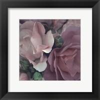 Parfum II Framed Print