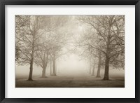 Framed Layers of Trees II