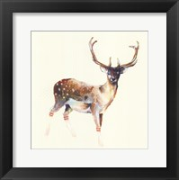 Framed Deer Wearing Gym Socks