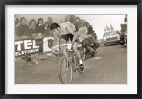 Framed Merckx Dominates