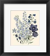 Framed Florals IV