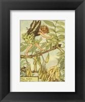 Framed Ash Tree Fairy