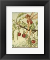 Framed Cherry Tree Fairy