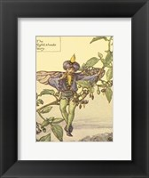 Framed Nightshade Fairy
