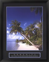 Framed Serenity - Palm Trees