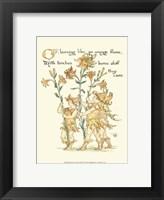 Framed Shakespeare's Garden VIII (Lily)