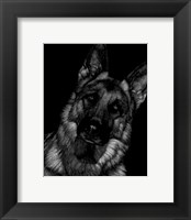 Framed Canine Scratchboard II