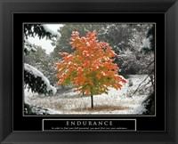 Framed Endurance - Fall Tree