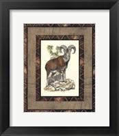 Framed Rustic Big Horn