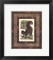Framed Rustic Squirrel