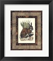 Framed Rustic Rabbit