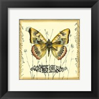 Butterfly and Wildflowers IV Framed Print