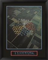 Framed Teamwork-Skydivers